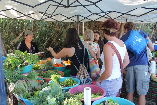 cabo vacation san jose fresh produce farmers market