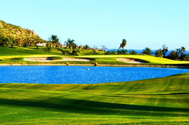 Cabo Real Golf Course Hurricane Odile Recovery Los Cabos Mexico