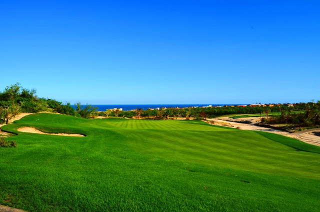 Club Campestre Golf Course Hurricane Odile Recovery Los Cabos Mexico