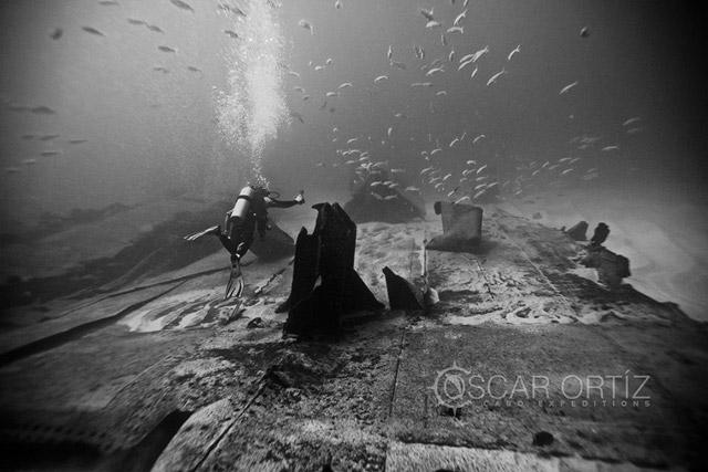 Diving Tours in Baja California Sur Mexico