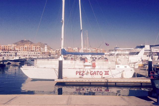 Catamaran tours in Cabo San Lucas Mexico