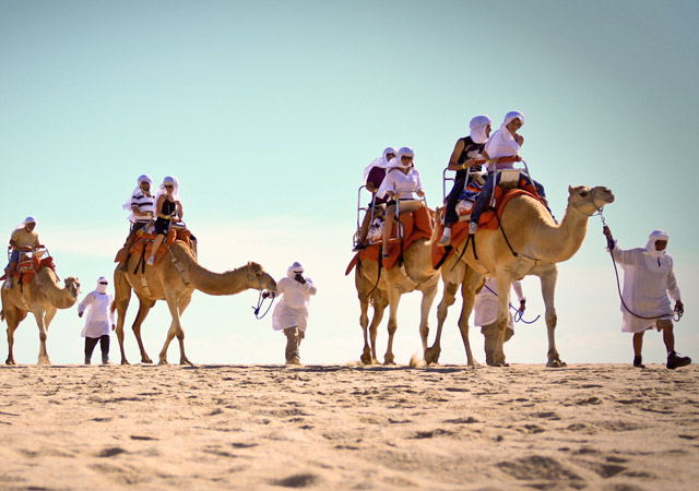 Cabo San Lucas Camel Rides