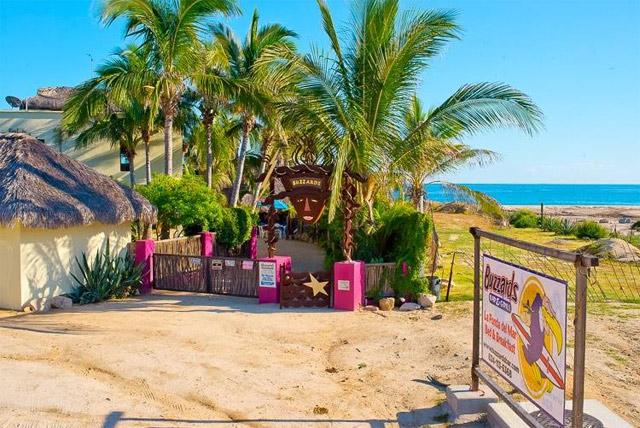 Buzzard's Bar and Grill in Los Cabos Mexico