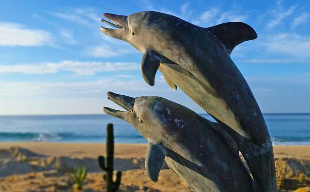Luxury vacation rental Villa delfines in Los Cabos Mexico