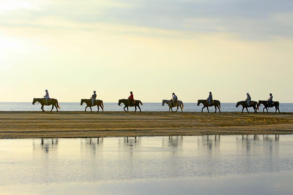 Beach Horseback Riding Tours in Los Cabos Mexico