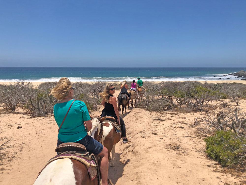 Beach Horseback Riding Tours Cabo San Lucas Mexico