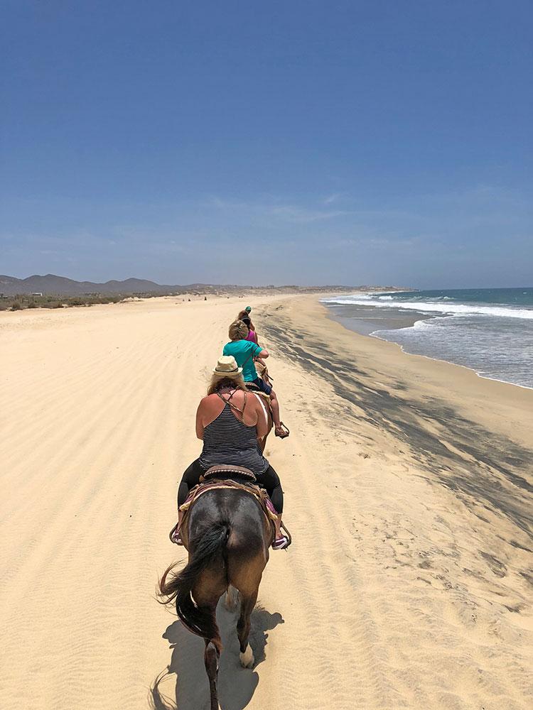 Horseback riding in Los Cabos Mexico