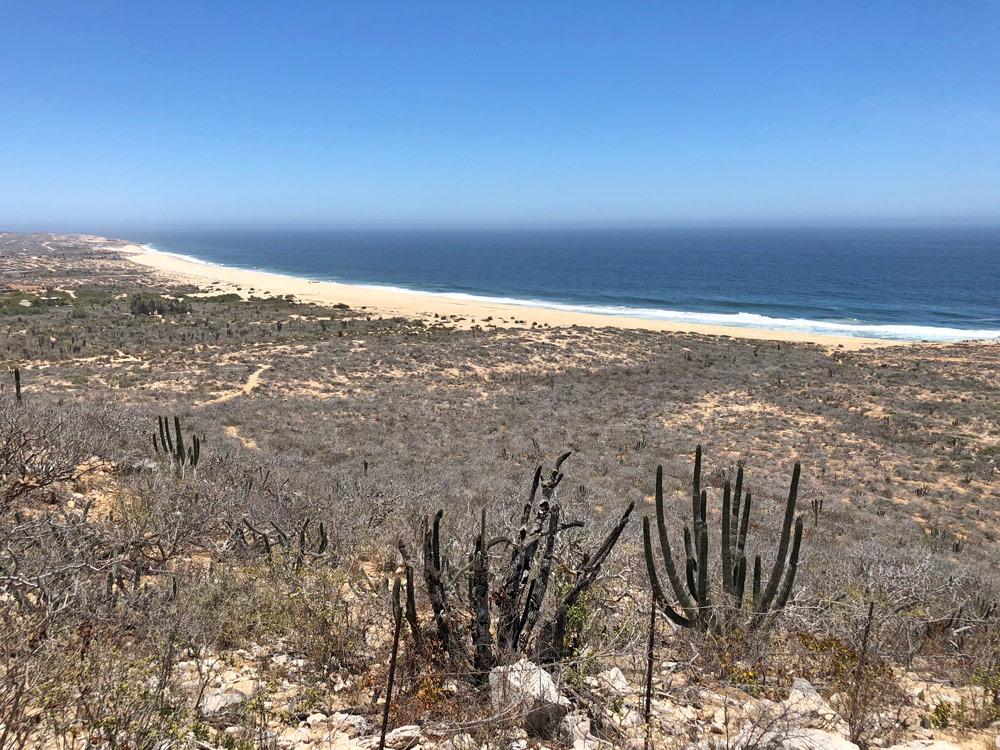 Pacific beach in Los Cabos Mexico