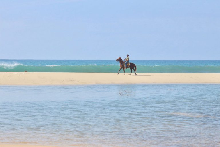 Horseback Riding Tours with Rancho Carisuva