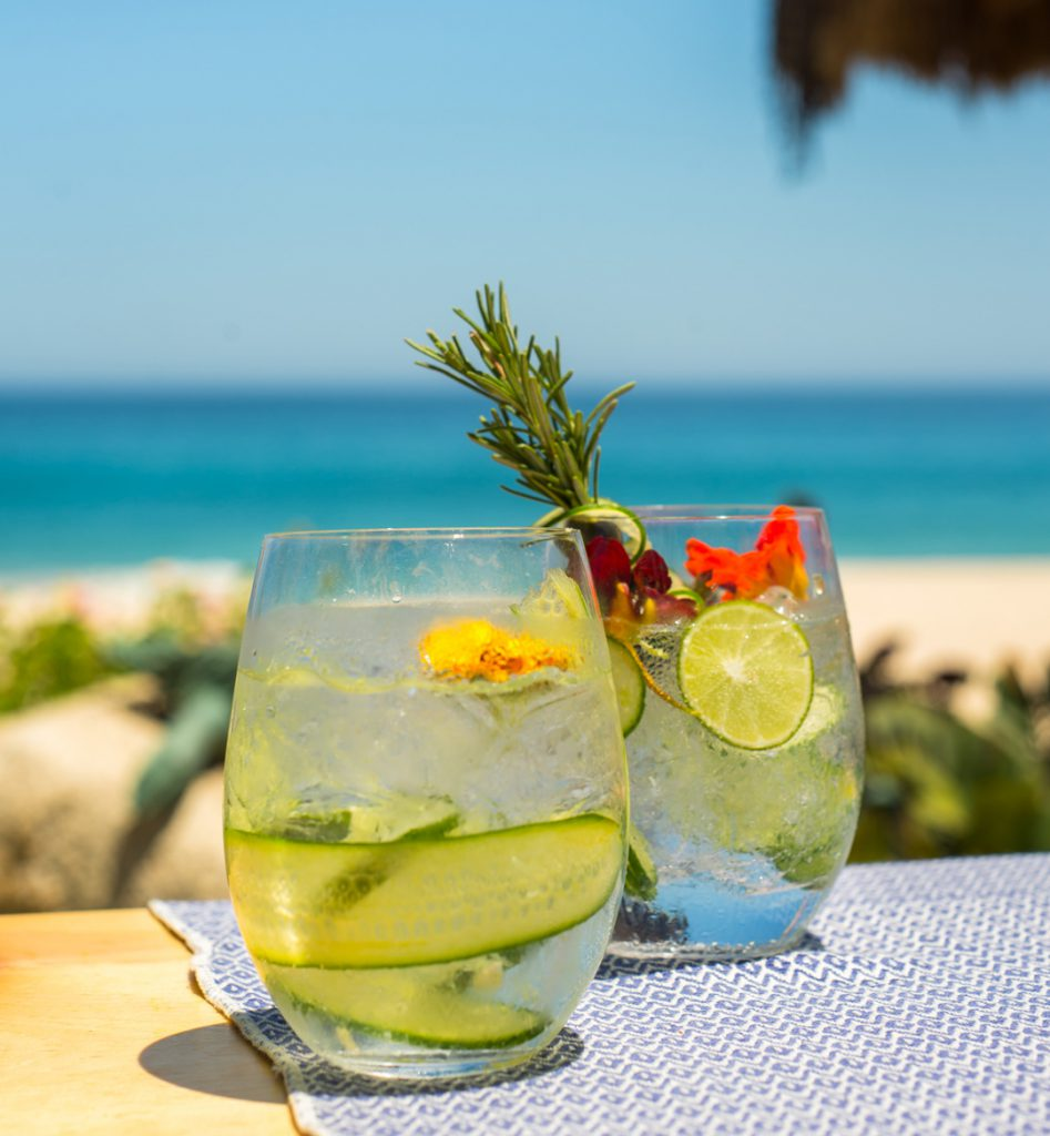Luxury Private Vacation Rentals in Cabo San Lucas Mexico